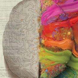 neuromarketing: comandano le emozioni
